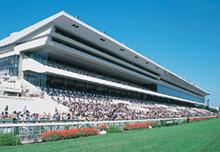 Kyoto Racecourse