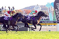 JRA Owner Registration|Japan Racing Association|Horse Racing in Japan