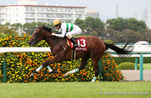Kansai Telecasting Corp. Sho Rose Stakes (Shuka Sho Trial) (G2)