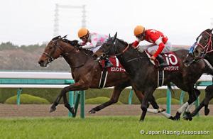 Sankeisports Hai Hanshin Himba Stakes (G2)