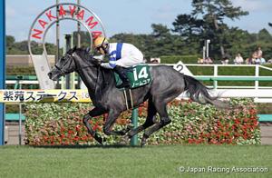 Shion Stakes (Shuka Sho Trial) (G3)