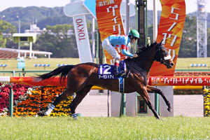 Tenno sho betting line nfl betting preview