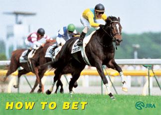 How to bet on horses in japan wassersportverein wertheim bettingen