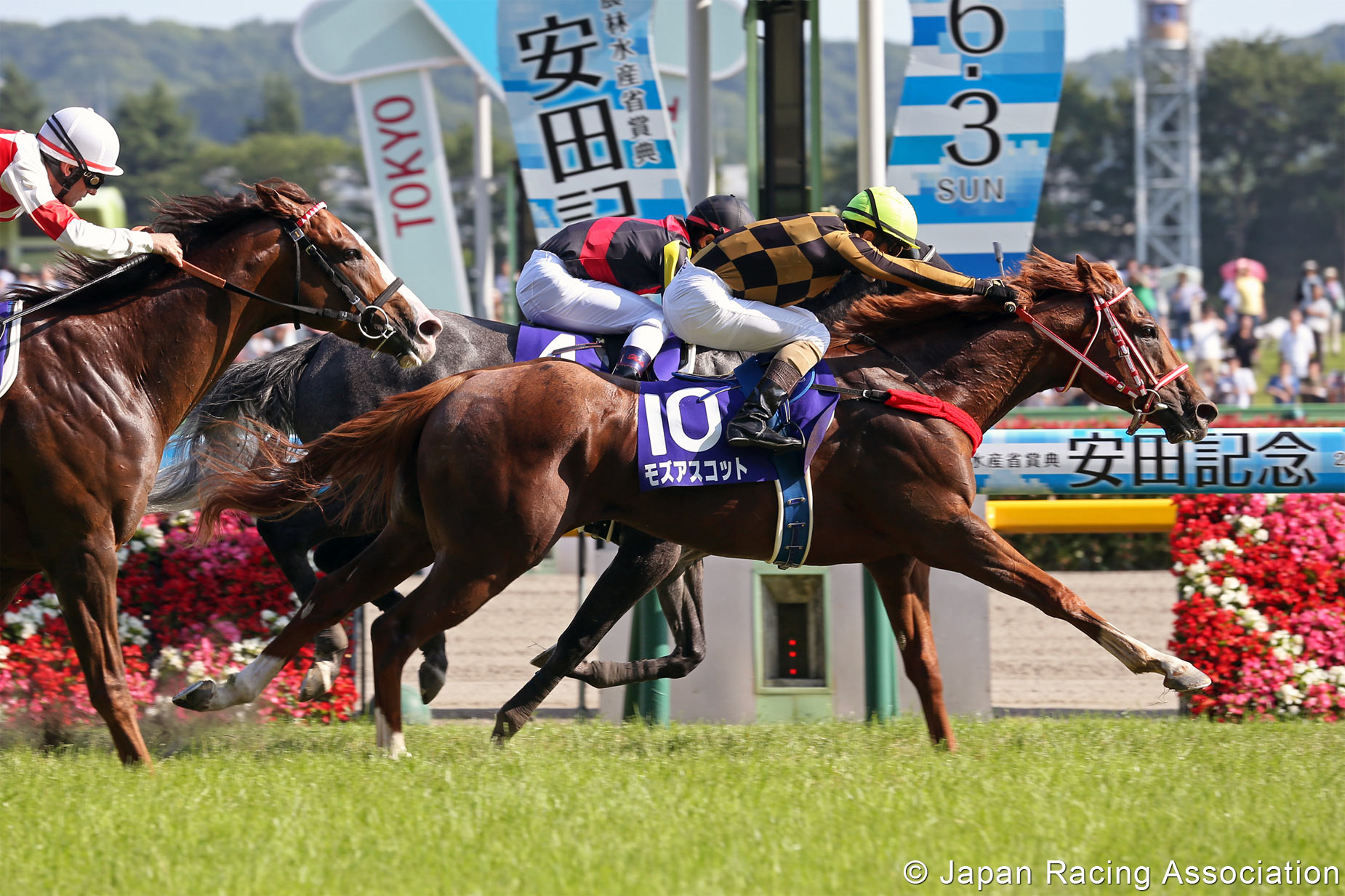 yasuda kinen betting sites