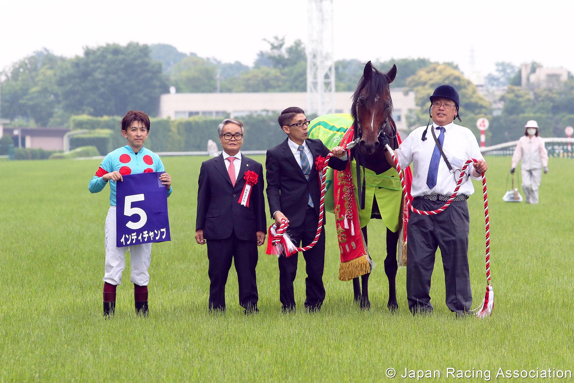 Yasuda kinen betting advice silvio luiz e mauro bettingadvice