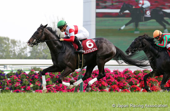 tenno sho betting on sports