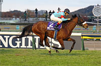 Japan Cup in association with LONGINES (International Invitational) (G1)