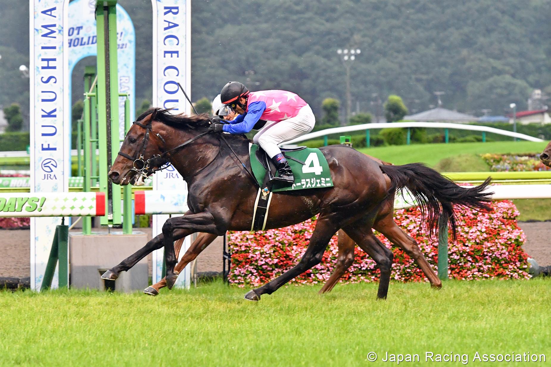 แข่งม้า ญี่ปุ่น